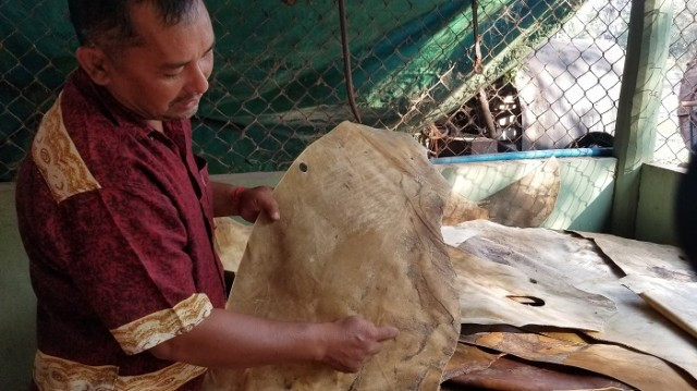 Cambodge & Arts : Préserver et enseigner l'art de la sculpture sur cuir, une tradition cambodgienne