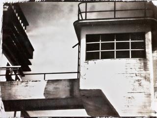 Van Dyke Brown print