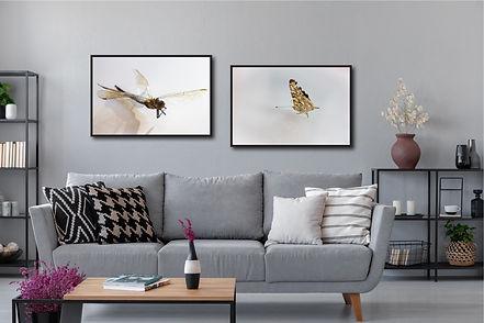 studiosieg_DragonflyButterfly.jpg