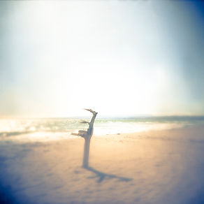 Lonely Beach.jpg