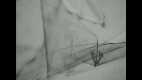 Tape Drawings, 2005