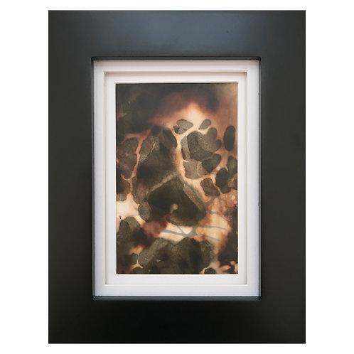 Untitled Chemigram #1 (framed)
