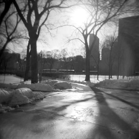 Sun in Park