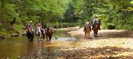 Horseback Riding.jpg