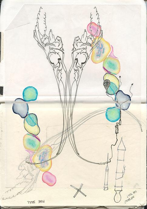 collage1.jpeg