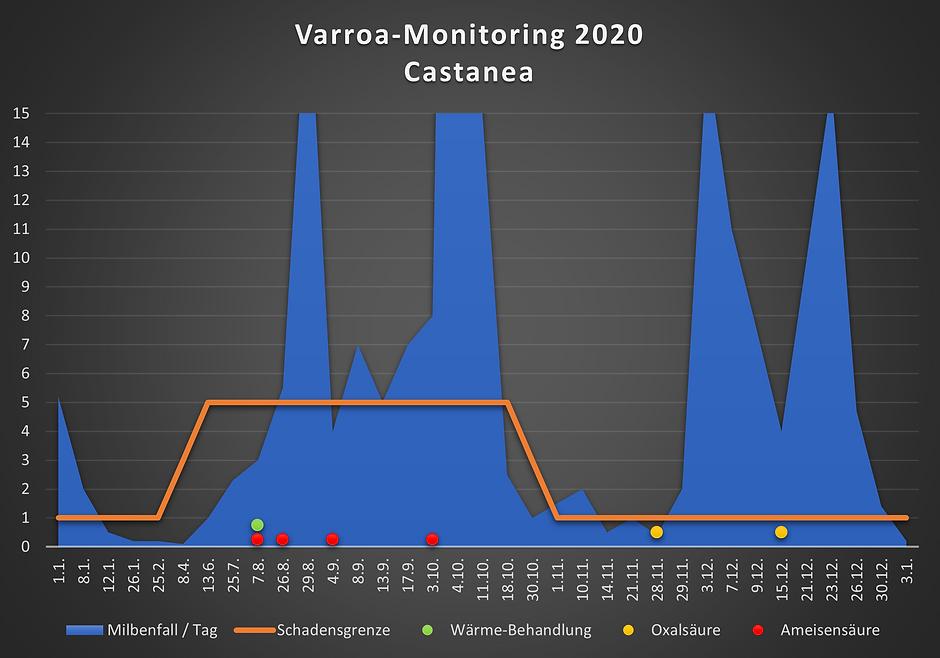 V12 Var.png