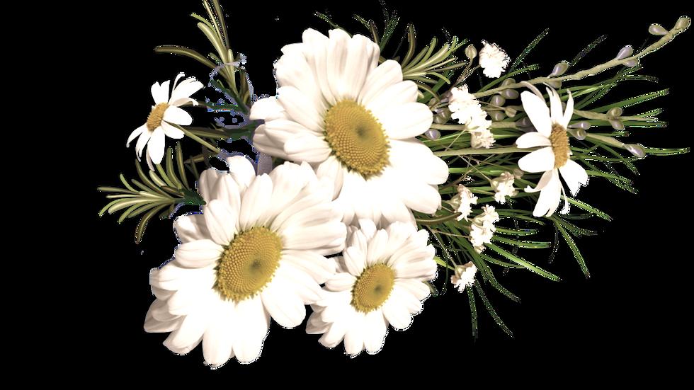 Blütenhonig (1kg)