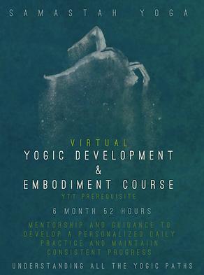 YDEC virtual.png