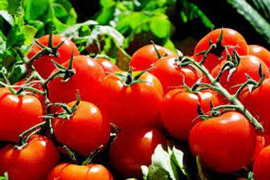 Tomatoes - Quart