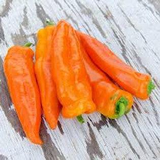 Sweet Oranos Peppers - Quart