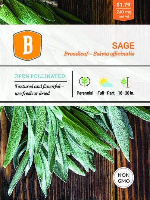 Sage - Broadleaf Seed
