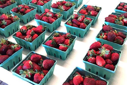 North Carolina Strawberries - Quart