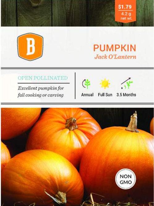 Pumpkin Jack O'Lantern Seed