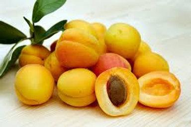 Apricots- Quart