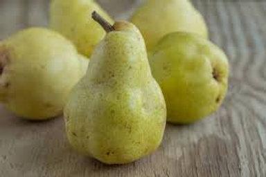Bartlett Pears-Quart