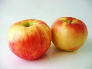 Honey Crisp Apples - Quart