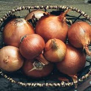 Onions - Quart