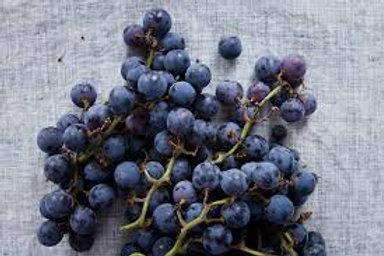 Concord Grapes-Quart
