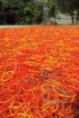 elastiques colorés