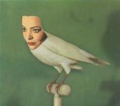 Pájara