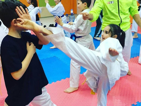 Koordinasyon ve Karate