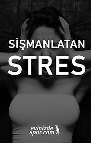 sismanlatan-stres.jpg