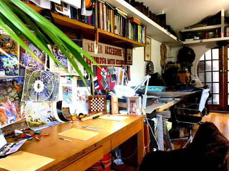 Plants in the studio