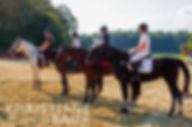 Turnierfoto Blaubeuren Pferdefestival Pferd,Turnierfotografin Ulm