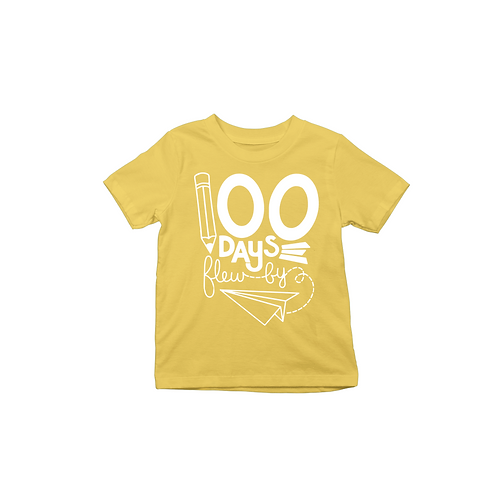 100 DAYS FLY BY