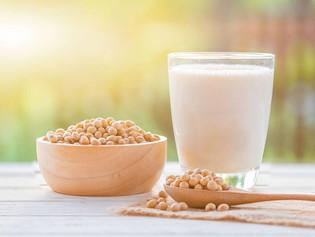 Starterkultur für veganer Joghurt