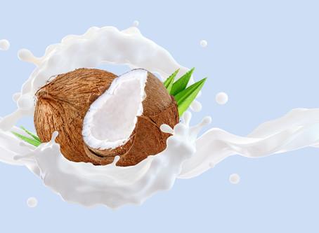 Ihr Spezialist für Kokosnuss Produkte