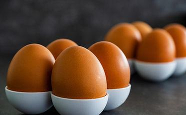 egg-4903676_1920.jpg