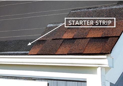 starter_strip.png