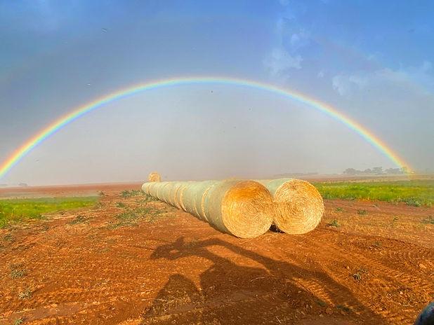 Rainbow-IMG_4420.jpg