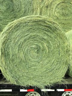 Round Hay Baling