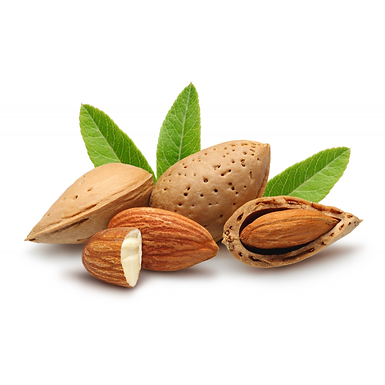 Almond Oil - Original