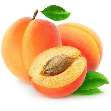 Apricot Kernel Oil - Organic