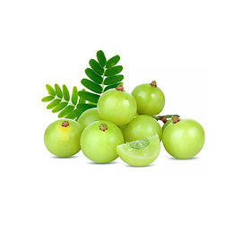 Amla Oil - Organic