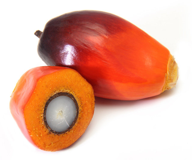 Palm Kernel Oil - RBD - Organic