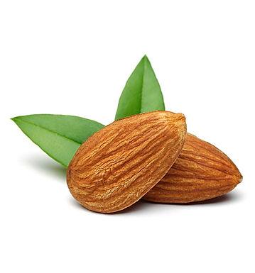 Sweet Almond Oil - Organic