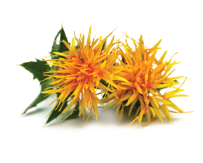 High Oleic Safflower Oil