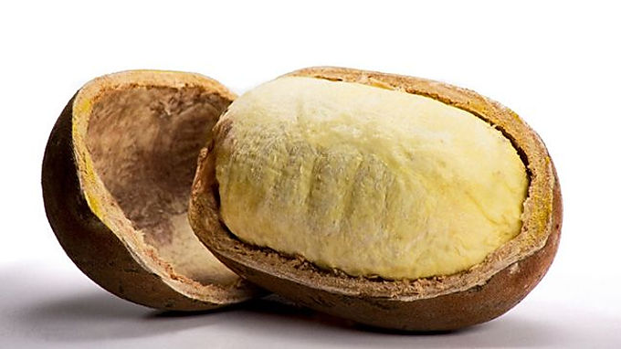 Cupuacu Butter - Organic