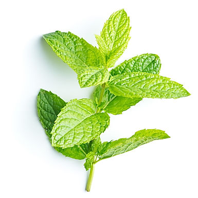 EO - Peppermint Oil