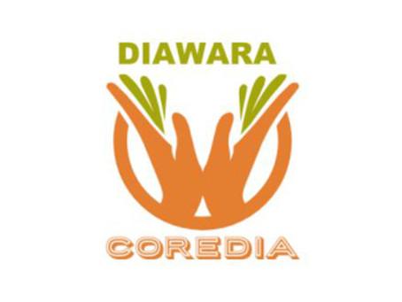 Quels projets proposez-vous pour le développement de Diawara ?