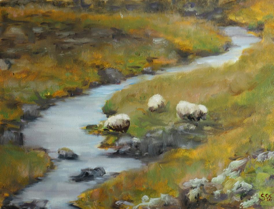 Winding River
