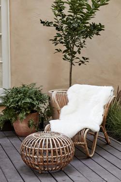 Van Der Beek's Cool Cali Home