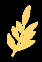 hojas-ama.png