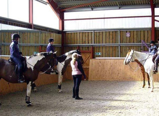 Covid 19 & Ros D Equine coaching