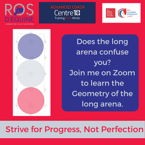 Diagram showing how some 20 metre circles fit into the long arena.