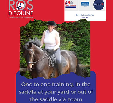 One to one training, in the saddle at yo